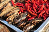 Food insects in Thailand. (Photo credit: Eugene Tang)